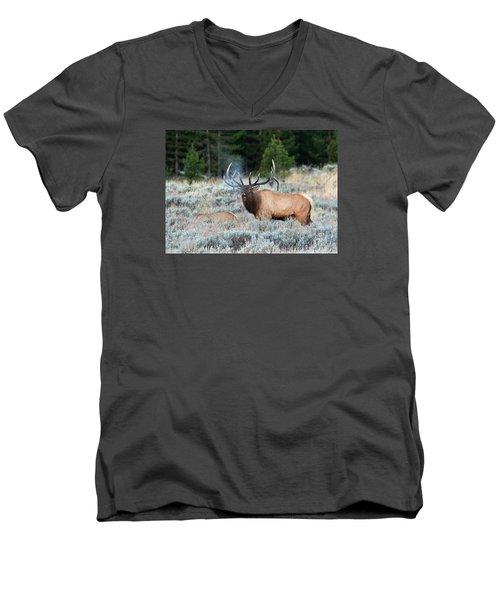 Cool Mornings Men's V-Neck T-Shirt