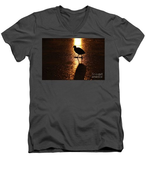 Coot Walks On Golden Ice  Men's V-Neck T-Shirt