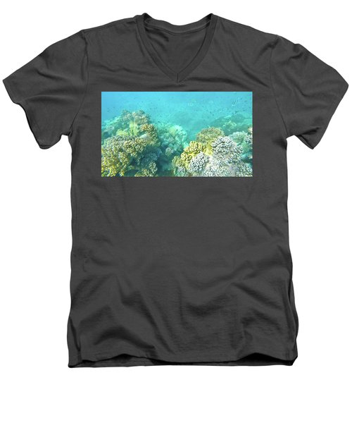 Coral Men's V-Neck T-Shirt