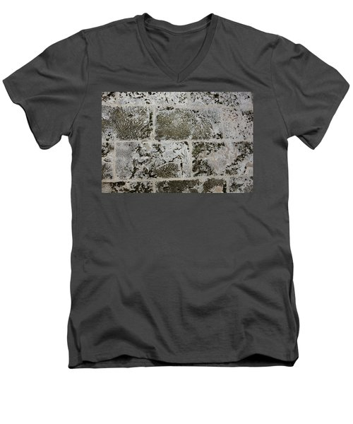 Coral Wall 205 Men's V-Neck T-Shirt by Michael Fryd