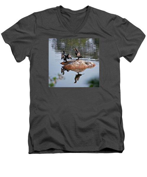 Cormorants Enjoying Warm Sun Men's V-Neck T-Shirt