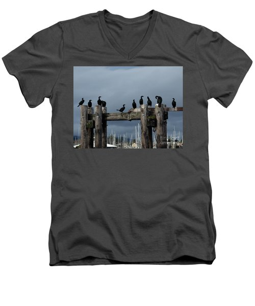 Cormorants Men's V-Neck T-Shirt