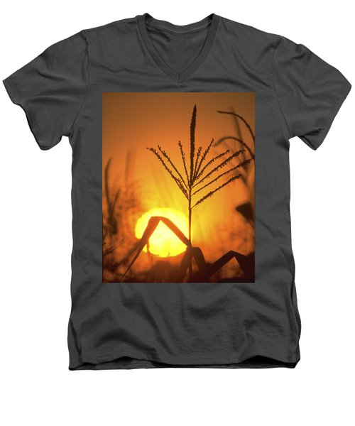 Cornfield Sunset Men's V-Neck T-Shirt