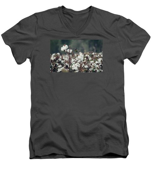 Cotton Field 5 Men's V-Neck T-Shirt by Andrea Anderegg