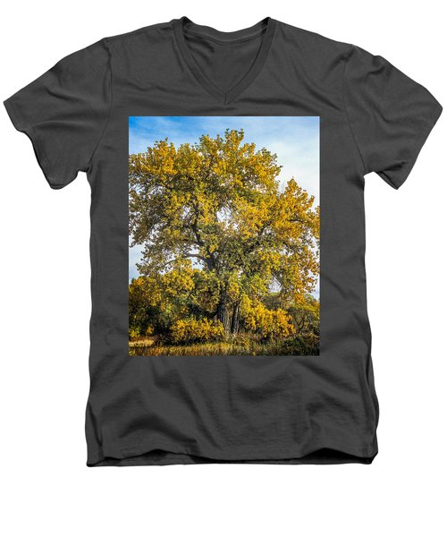 Cottonwood Tree # 12 In Fall Colors In Colorado Men's V-Neck T-Shirt