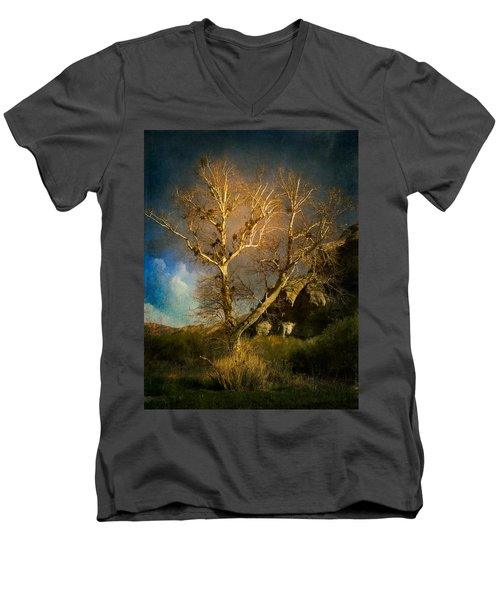 Cottonwood Tree Men's V-Neck T-Shirt