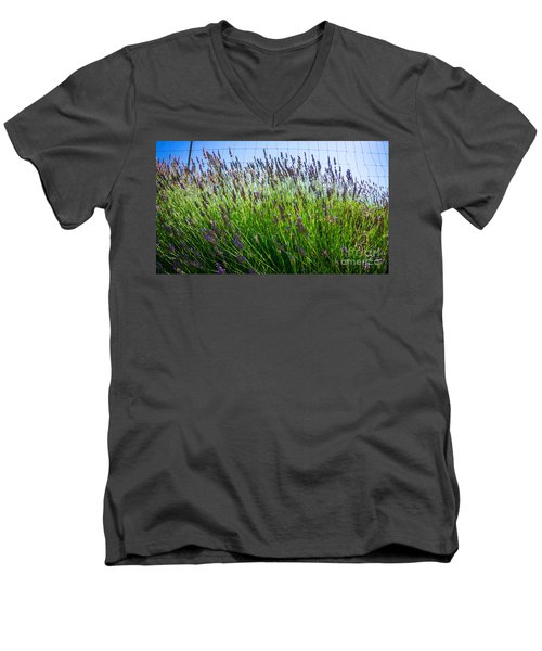 Country Lavender II Men's V-Neck T-Shirt
