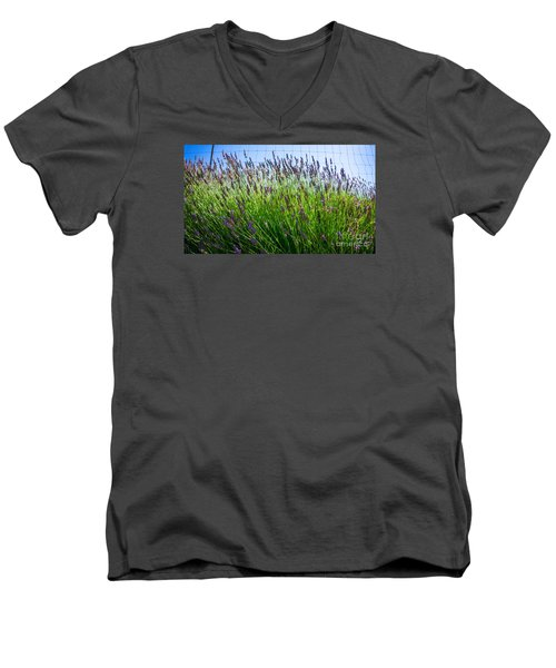 Country Lavender II Men's V-Neck T-Shirt