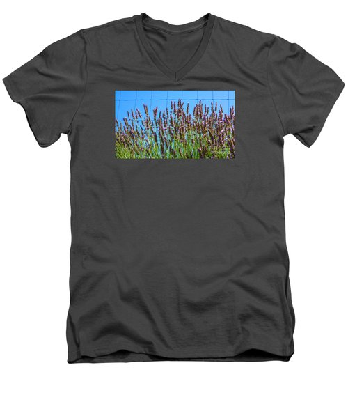 Country Lavender IIi Men's V-Neck T-Shirt