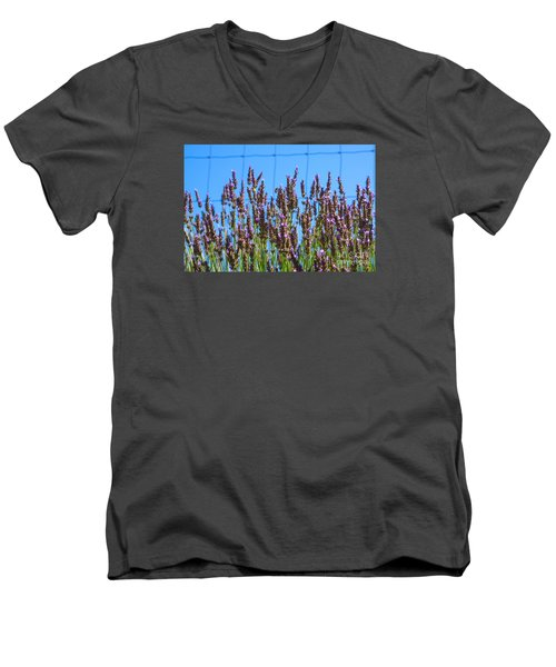 Country Lavender Iv Men's V-Neck T-Shirt