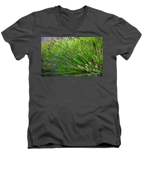 Country Lavender Vi Men's V-Neck T-Shirt