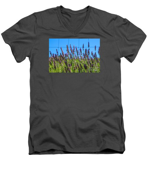 Country Lavender Vii Men's V-Neck T-Shirt
