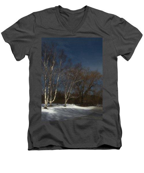 Country Roadside Birch Men's V-Neck T-Shirt