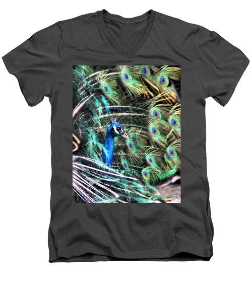 Courtship Dance Men's V-Neck T-Shirt