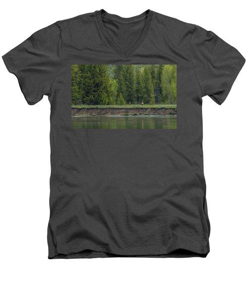 Cow Elk On The Riverbank Men's V-Neck T-Shirt