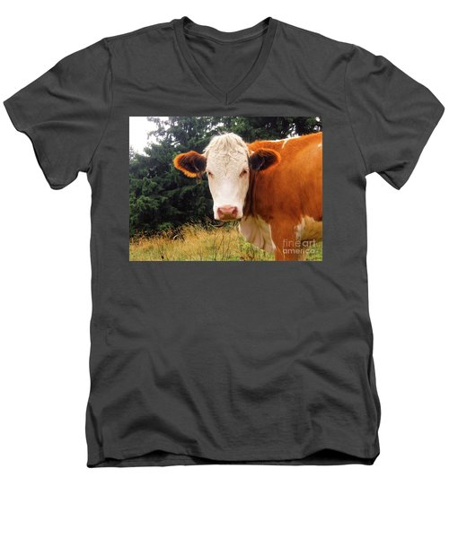 Men's V-Neck T-Shirt featuring the photograph Cow In Pasture by MGL Meiklejohn Graphics Licensing