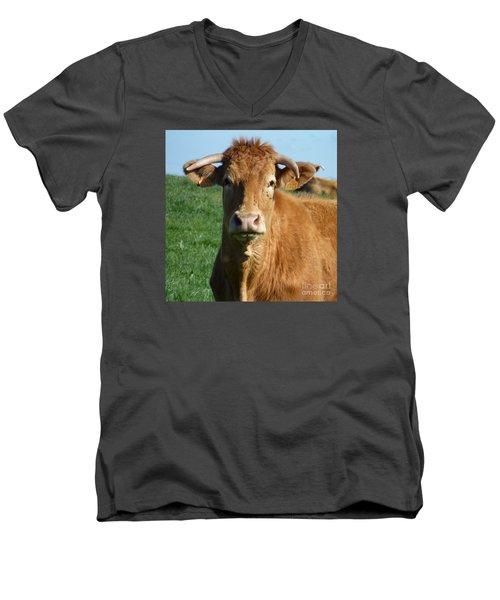 Cow Portrait Men's V-Neck T-Shirt by Jean Bernard Roussilhe