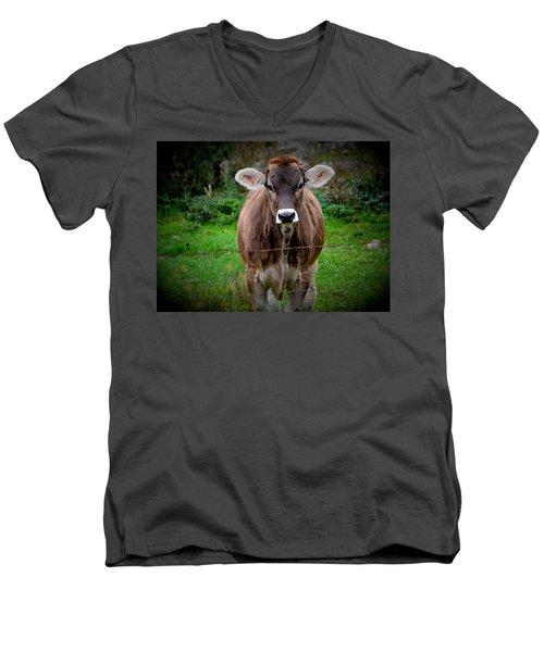 Cowlick Men's V-Neck T-Shirt