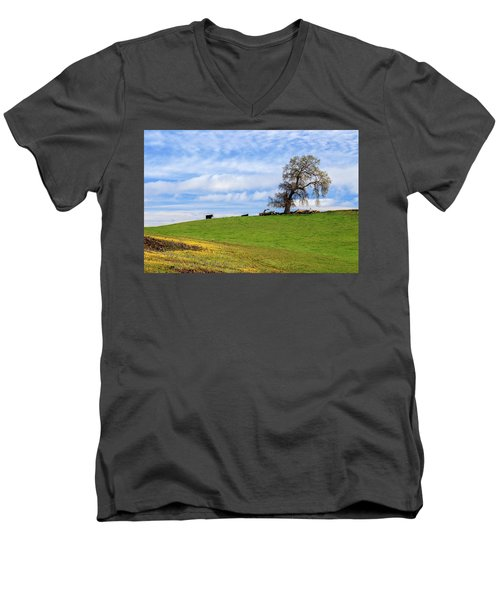 Men's V-Neck T-Shirt featuring the photograph Cows On A Spring Hill by James Eddy