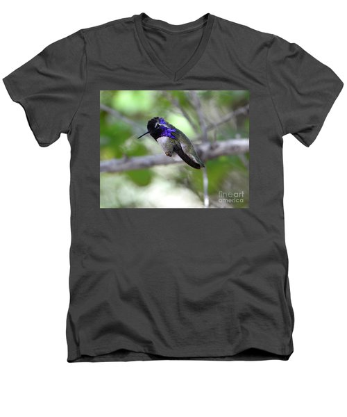 Coy Costa's Hummingbird Men's V-Neck T-Shirt