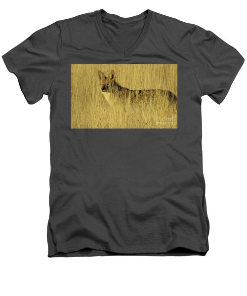 Coyote 4 Men's V-Neck T-Shirt