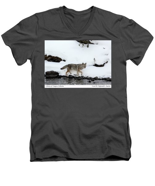 Coyote In Yellowstone National Park Men's V-Neck T-Shirt by Carol M Highsmith