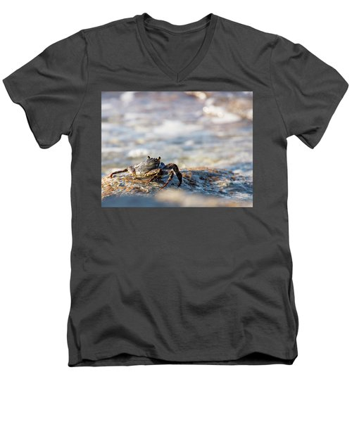Crab Looking For Food Men's V-Neck T-Shirt
