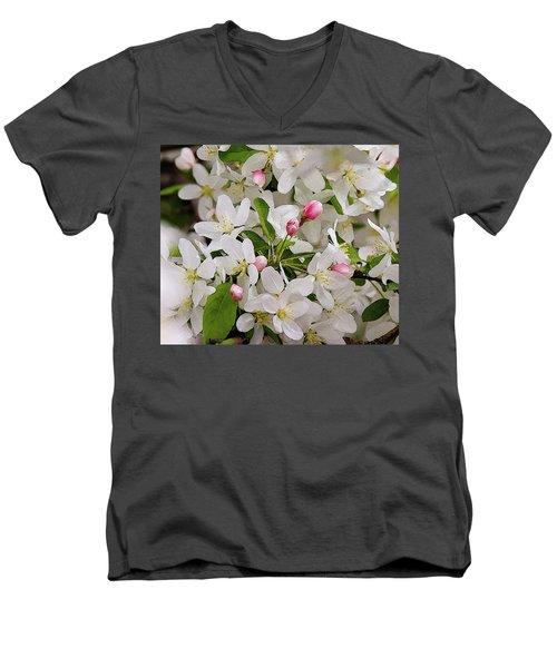 Crabapple Blossoms 5 Men's V-Neck T-Shirt