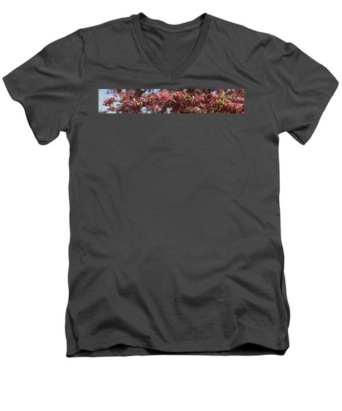 Crabapple In Spring Panoramic Men's V-Neck T-Shirt