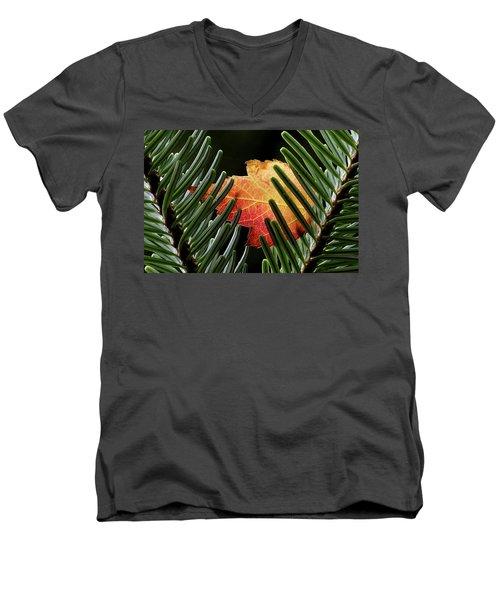 Cradled Men's V-Neck T-Shirt