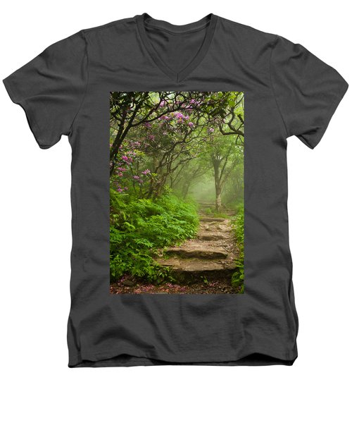 Craggy Steps Men's V-Neck T-Shirt