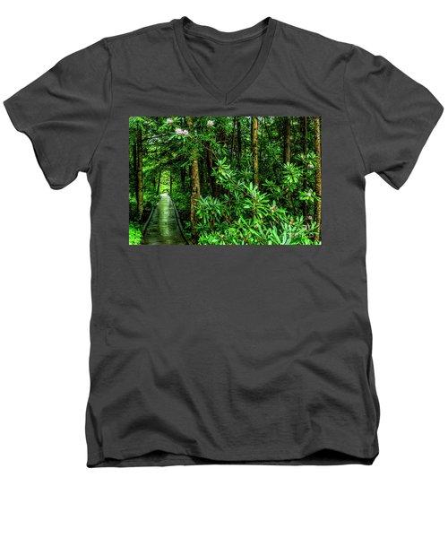 Cranberry Glades Boardwalk Men's V-Neck T-Shirt