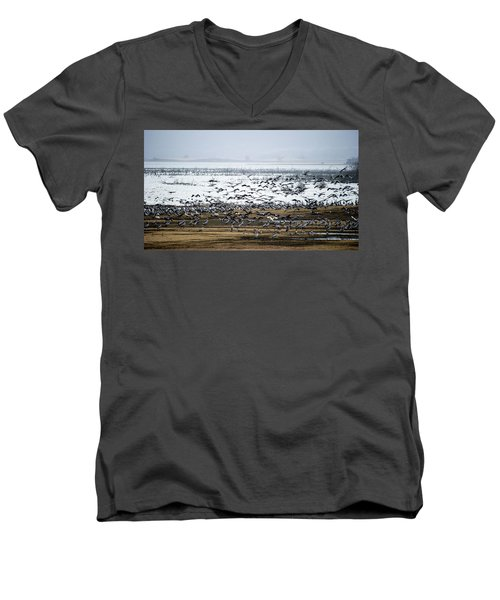 Men's V-Neck T-Shirt featuring the photograph Crane Dance by Torbjorn Swenelius