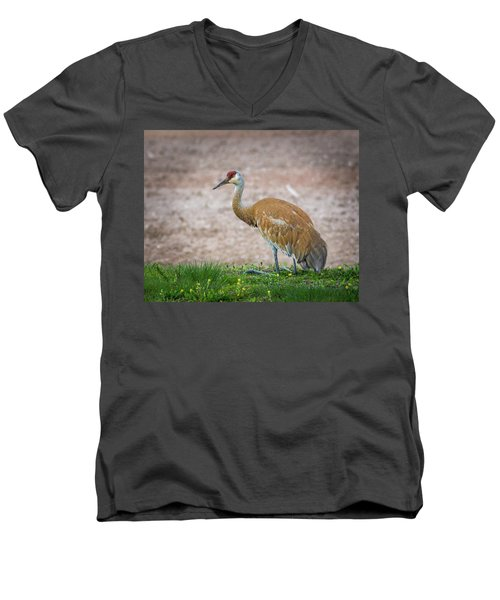 Men's V-Neck T-Shirt featuring the photograph Crane Down by Bill Pevlor