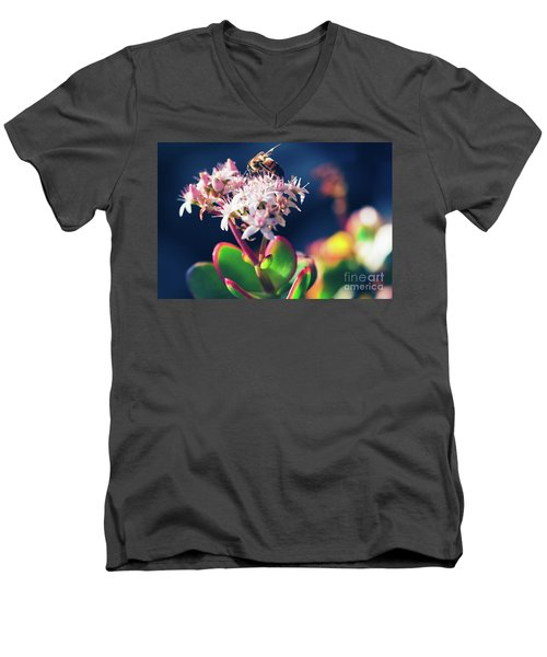 Men's V-Neck T-Shirt featuring the photograph Crassula Ovata Flowers And Honey Bee by Sharon Mau