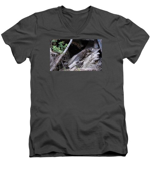 Creatures Of The Night Men's V-Neck T-Shirt