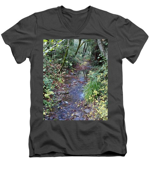 Creek On Mt Tamalpais 2 Men's V-Neck T-Shirt