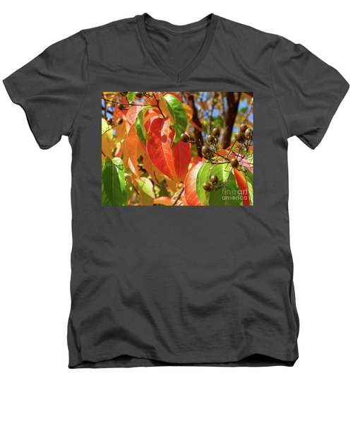 Crepe Myrtle Autumn Color Men's V-Neck T-Shirt