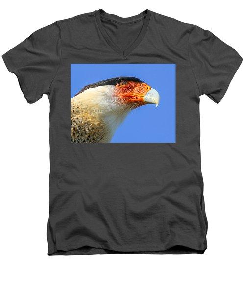 Crested Caracara Face Men's V-Neck T-Shirt