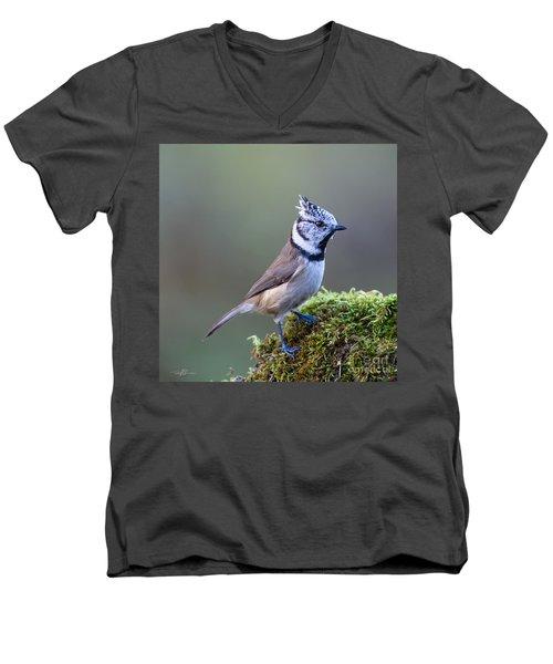 Crested Tit Men's V-Neck T-Shirt