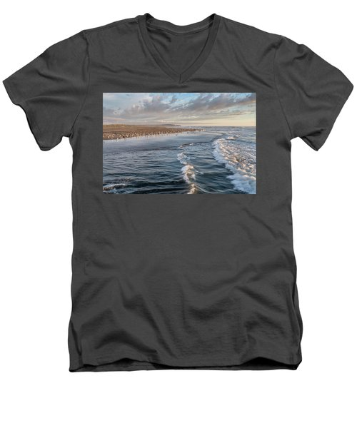 Crests And Birds Men's V-Neck T-Shirt by Greg Nyquist