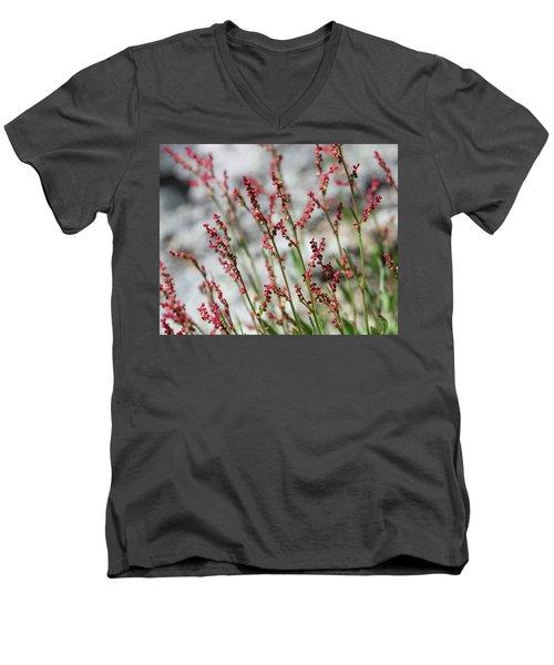 Crimson Field Men's V-Neck T-Shirt