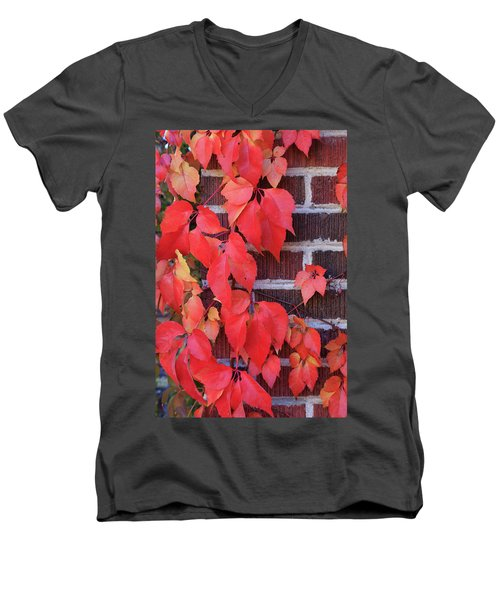 Crimson Leaves Men's V-Neck T-Shirt