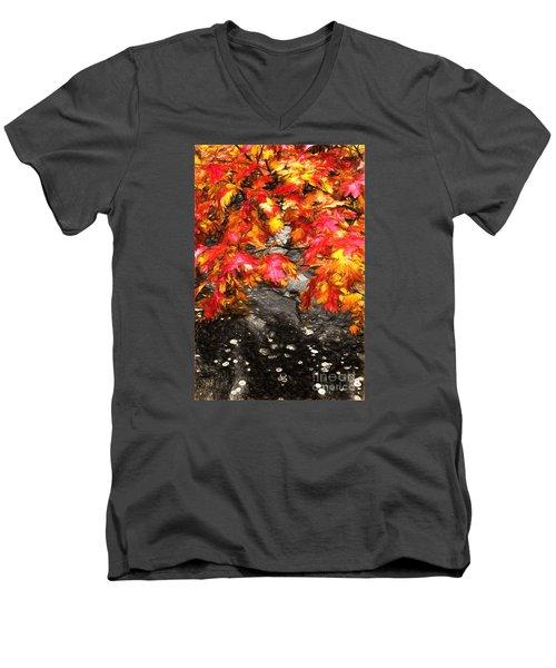 Crimson Splendor II Men's V-Neck T-Shirt by Dan Carmichael