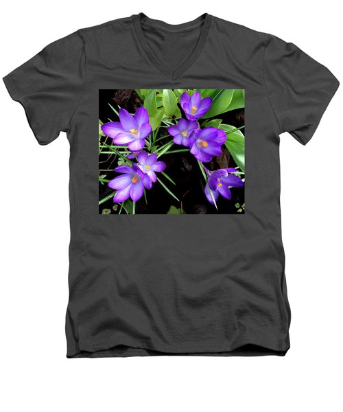 Crocus First To Bloom Men's V-Neck T-Shirt