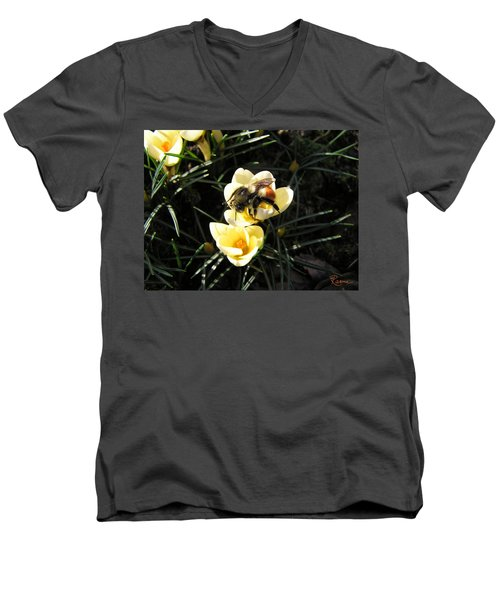 Crocus Gold Men's V-Neck T-Shirt