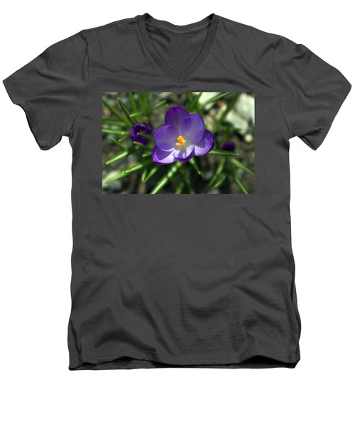 Men's V-Neck T-Shirt featuring the photograph Crocus In Bloom #1 by Jeff Severson