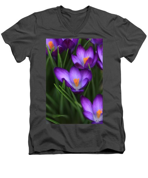 Crocus Vividus Men's V-Neck T-Shirt