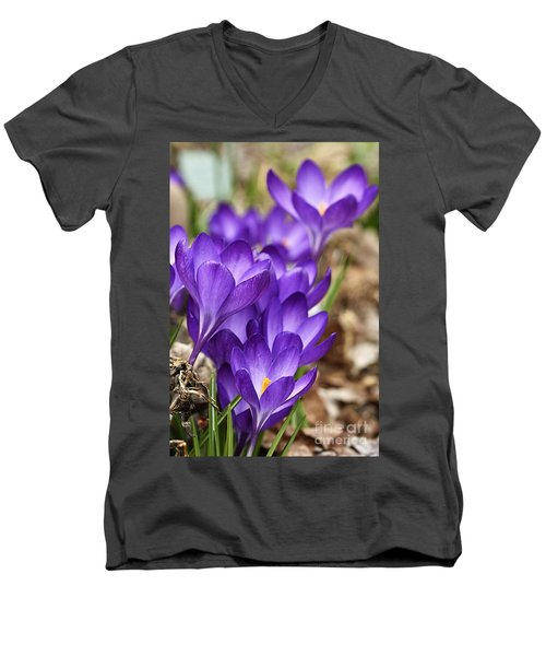Men's V-Neck T-Shirt featuring the photograph Crocuses by Larry Ricker