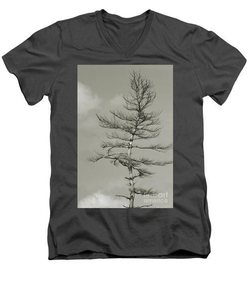 Crooked Tree Men's V-Neck T-Shirt